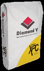 דימונד וי XPC