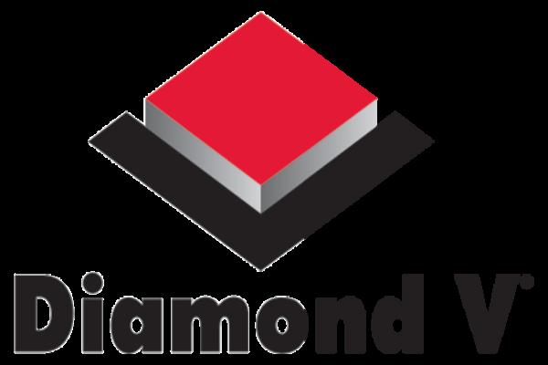 דימונד וי לוגו