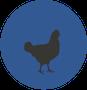עיגול כחול עם תרנגולת לול ש.ח. מהנדסים ויועצים