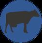 עיגול כחול עם פרה רפת ש.ח. מהנדסים ויועצים