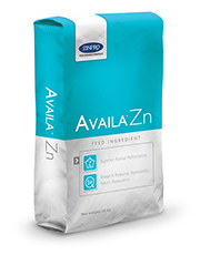 bag_AVAILA-ZN